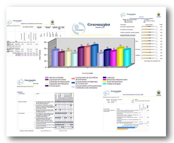 Software de CCO Los Consultores